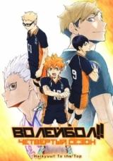 Волейбол!! (четвёртый сезон) / Haikyuu!!: To the Top